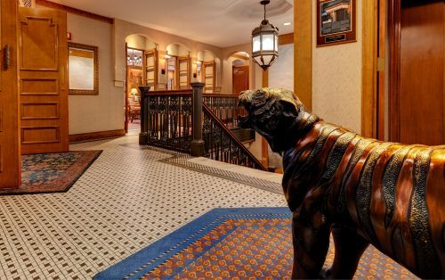 Second Floor at Casablanca Hotel starring our mascot, Bogey the Tiger